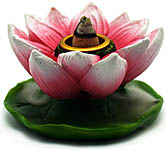 Backflow Cone Burner: Mini Pink Lotus