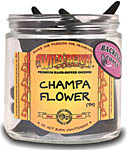 Wildberry BACKFLOW Cones: Champa Flower (NEW)