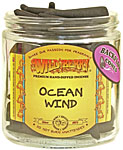 Wildberry BACKFLOW Cones: Ocean Wind (NEW)