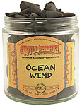 Wildberry CONES: Ocean Wind