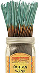 Wildberry Incense Sticks: Ocean Wind